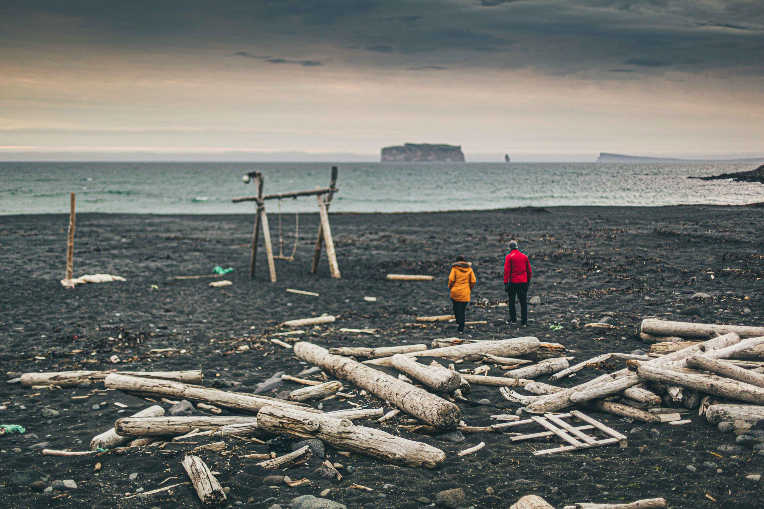 Driftwood-in-Skagafjörður